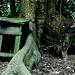 Roots&Stones