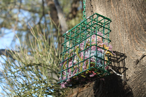 Yarn in Suet Feeder