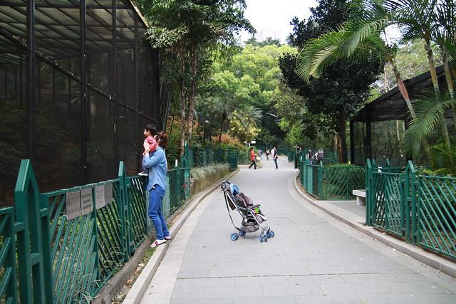 HK Zoological & Botanical Garden