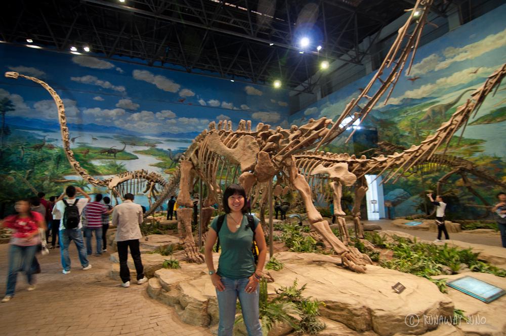 Mamenchisaurus_hechuanensis_Datousaurus_Bashanensis_Zigong_China