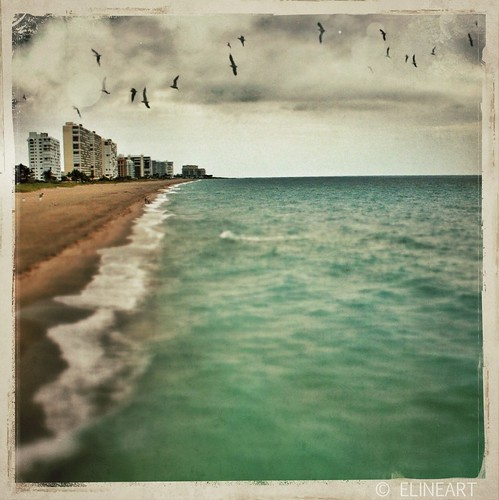 329/365- Deerfield Beach Cityscape by elineart