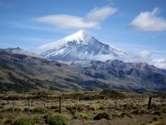Lanín Volcano