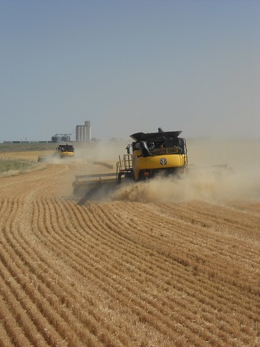 Combining with the elevator on the horizon