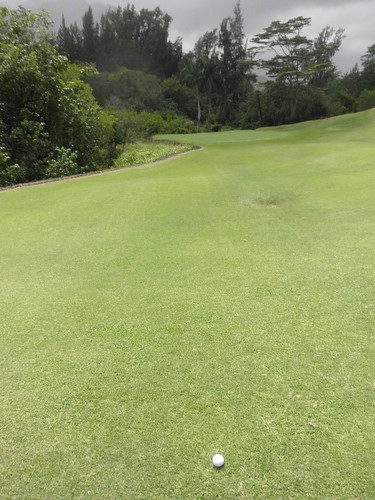Royal Hawaiian Golf Club 253