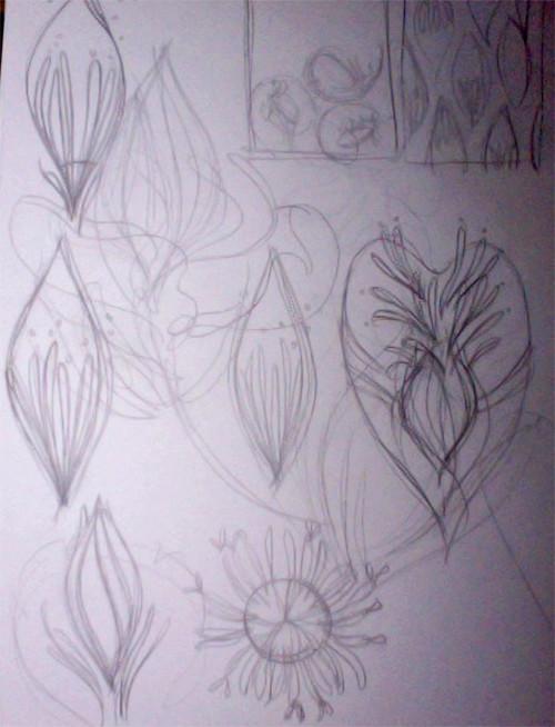 bananaflower_sketch_lindsaynohl