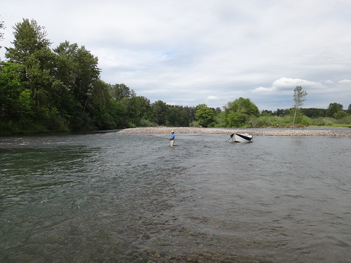 Nice side channel on the Middle Fork Willamette River that is loaded with cutthroats.