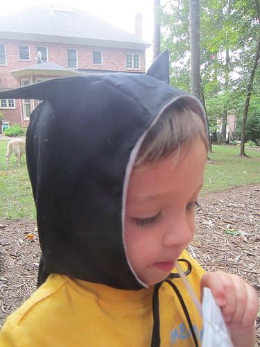 hood closeup