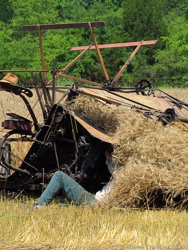 McCormick Reaper-Binder, Howell Living History Farm, Lambertville, New Jersey