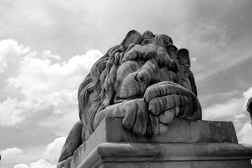 Legion Field Lion. lensman20/Flickr