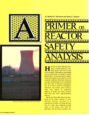 Primer on Reactor Safety Analysis