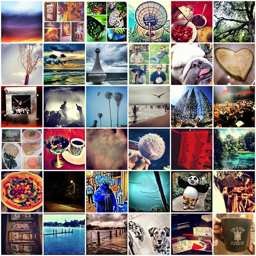 2012 Photoaday Mosaic V * Days 145 - 180 by elawgrrl