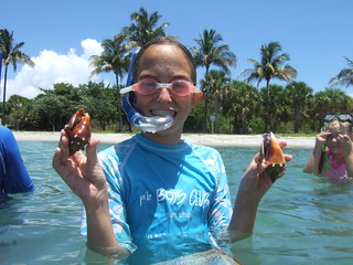 Harper finds 2 more fighting conchs.