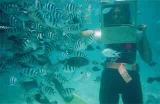 Feeding the fish underwater