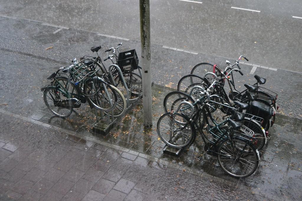 GoLivingIn Amsterdam in the rain
