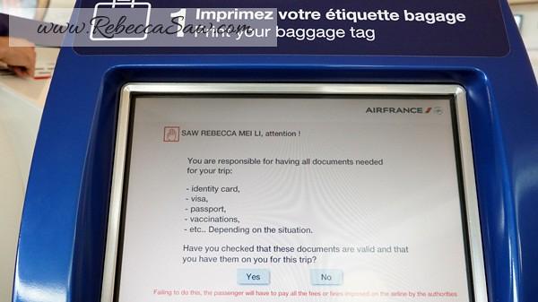 Paris Charles de Gaulle Airport - rebeccasaw (28)