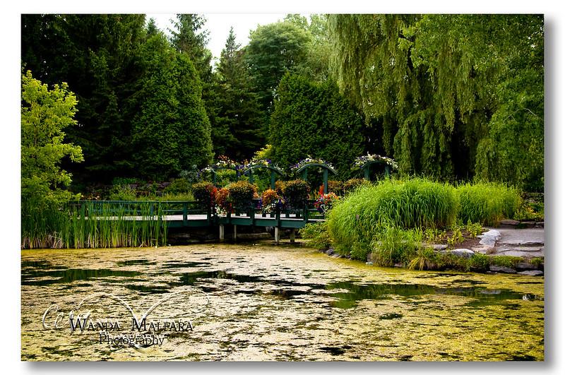 Nature Park Picnic 167