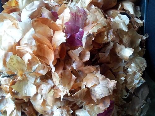onion skins.