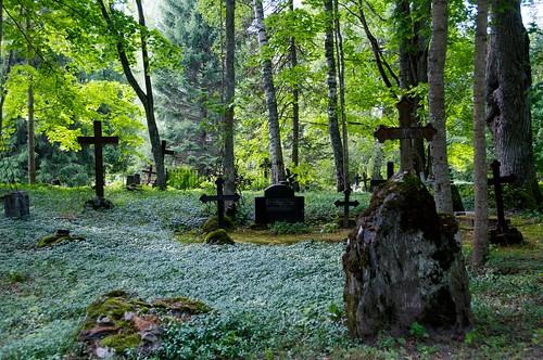 cemetery grave estonia cross risti 2012 eesti hautausmaa viro hauta d300s otepää