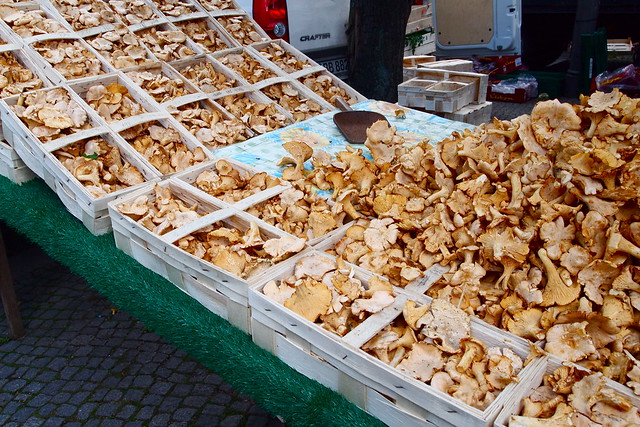 Chanterelles at the market