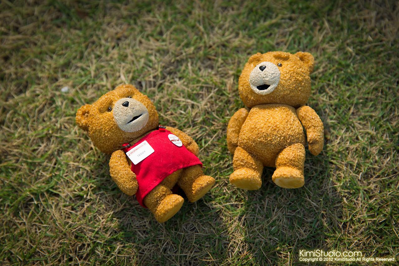 2012.11.06 Teddy-003