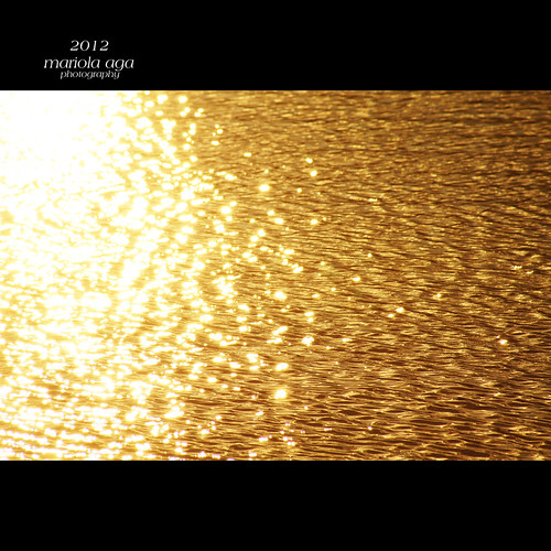 park light sunset sun sunlight lake reflection nature water square golden glare surface ripples tones coth thegalaxy coth5 thesunshinegroup sunrays5