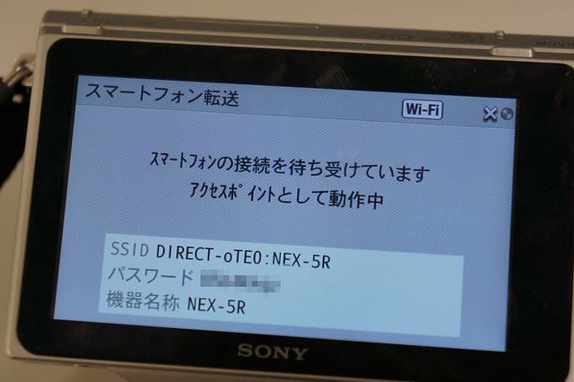 DSC07666_s
