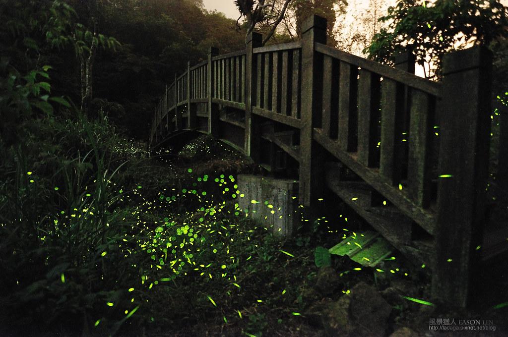 通往星星的橋