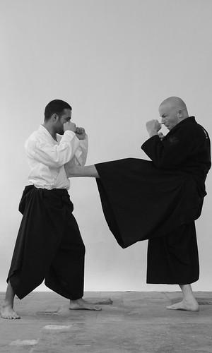 Ninjutsu push kick, mae sokugyaku geri by Daniel Sheriff