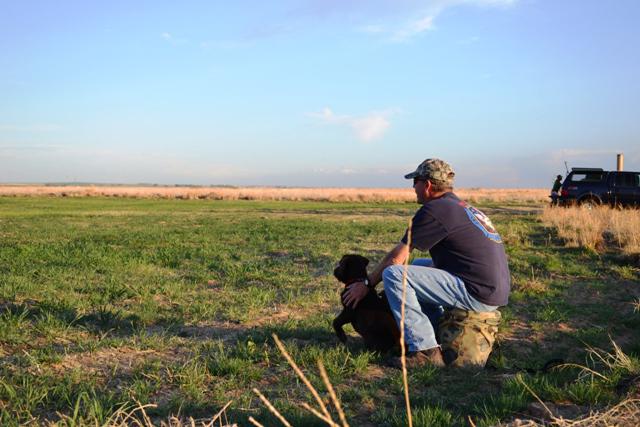 Hunting Dog Training Tools