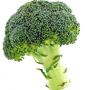 can-i-give-my-baby-broccoli