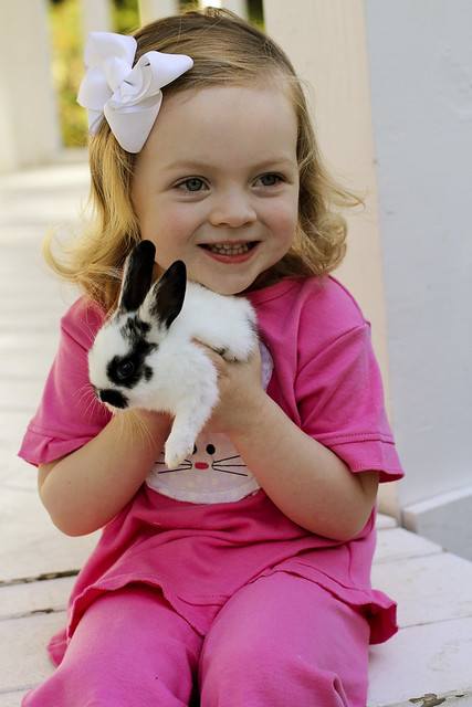 Bunny_Ava(4)