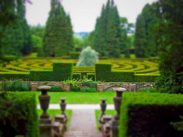 Maze at Chatsworth gardens (tiltshift)