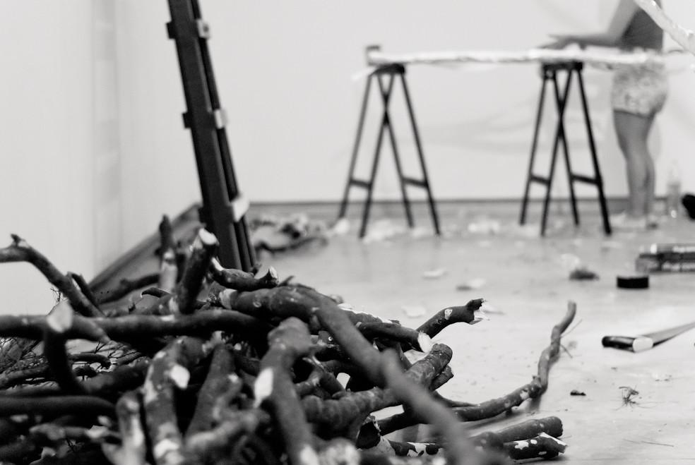 NOVA — Festival De Cultura Contemporânea — By Giselle Galvão