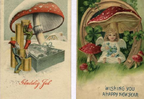 fly-agaric-new-year1