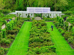 Brooklyn Botanic Garden 2012