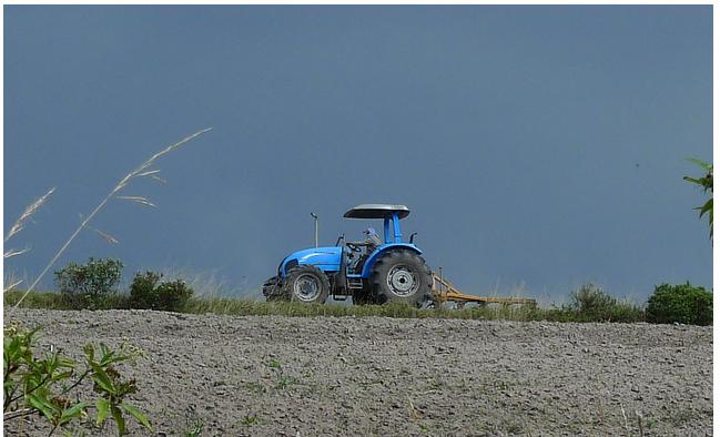 Otovalo Farmer 2011