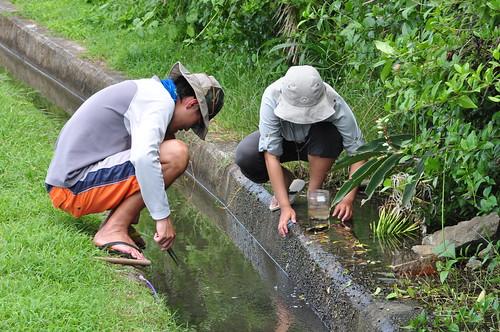 研究團隊於港仔村漁港海岸湧泉取樣。(圖片來源:邱郁文研究團隊)