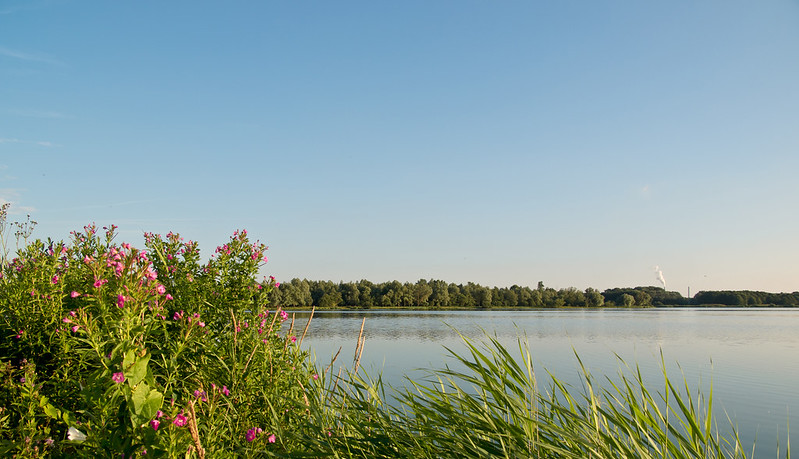 The beautiful landscapes of Het Twiske
