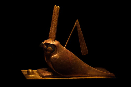 An Egyptian quail by The Bacher Family