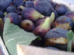 damson(0.0), vegetable(1.0), plant(1.0), common fig(1.0), produce(1.0), fruit(1.0), food(1.0),