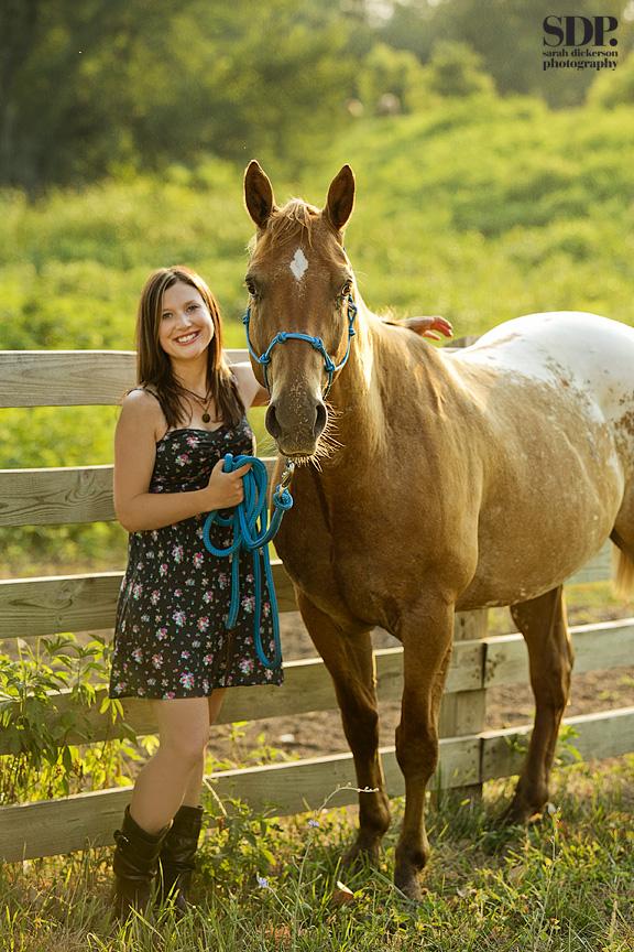 Missouri equine portraits