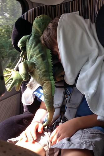 224 lizard head