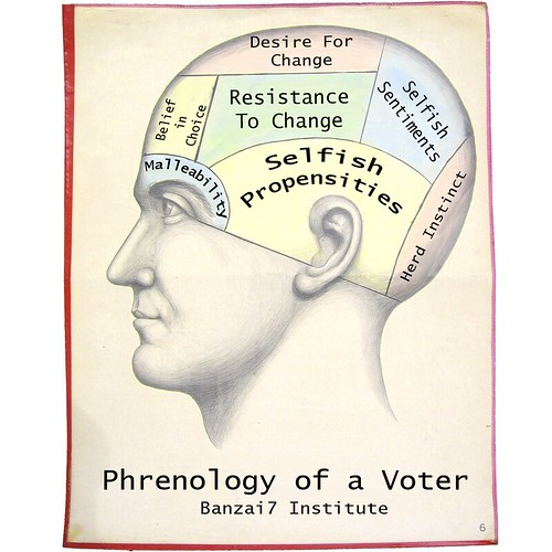 PHRENOLOGY OF A VOTER by Colonel Flick
