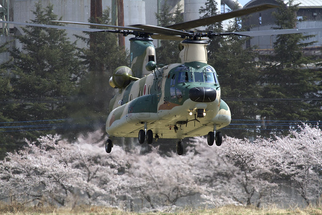 JASDF CH47J