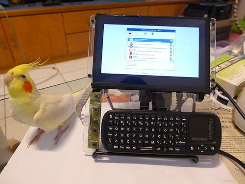 Raspberry Pi 可攜電腦與粉圓