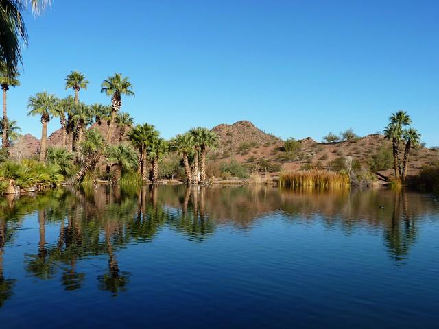 Lake @ Papago Park (3)