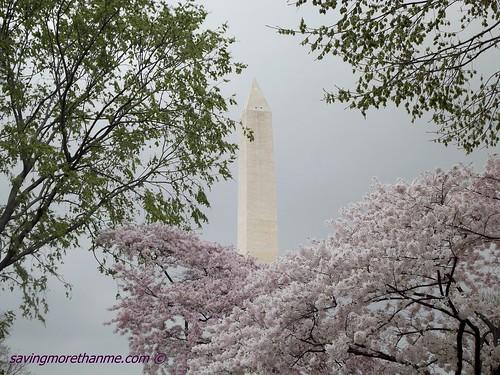 2012 Washington Monument