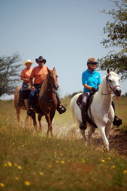 Horseback Riders are always welcome at Grayson Highlands