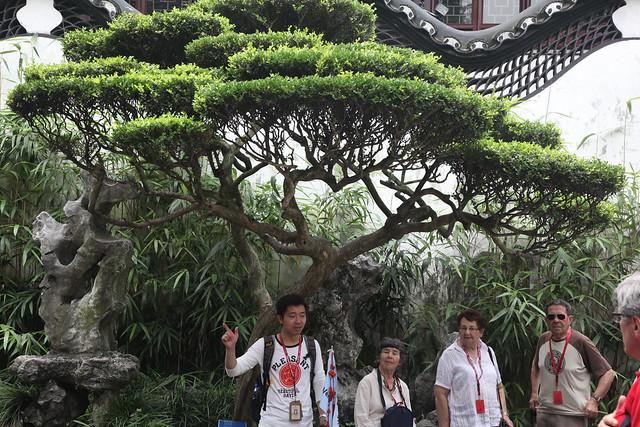 Shanghai Yuyuan Park-28
