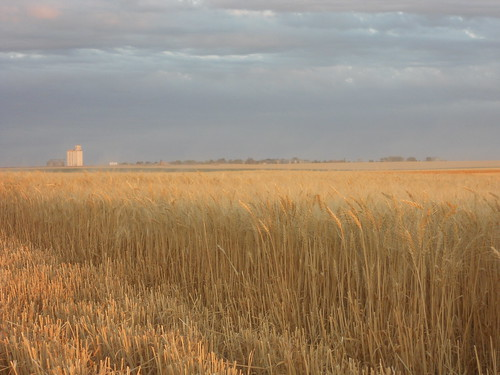 Levant elevator in the distance